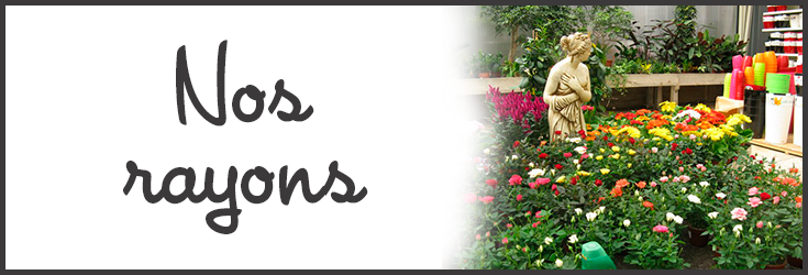 NOS-RAYONS-JARDINERIE-MARCON-FLEURS.png